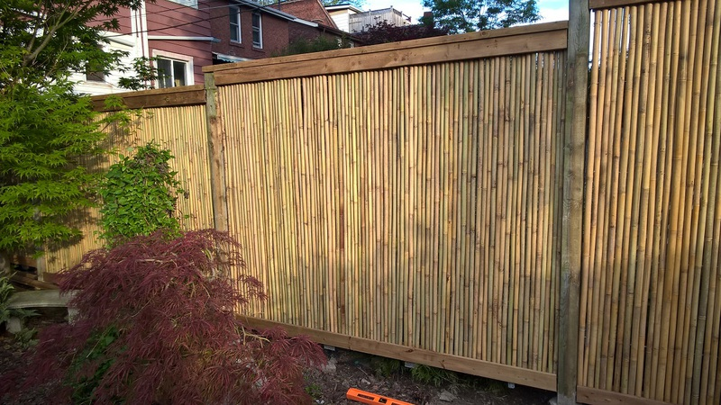 Tonkin Bamboo Rolled Fence