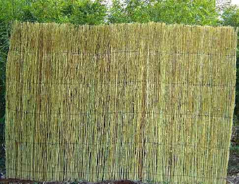Bamboo Twig Fence