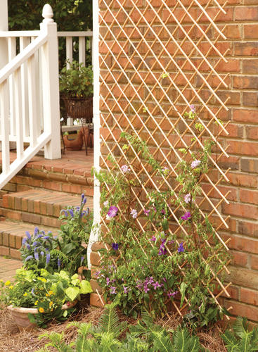 how to put up lattice fence